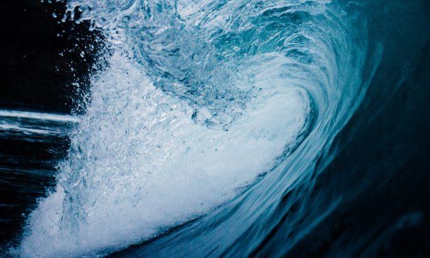 Surviving a tsunami failure